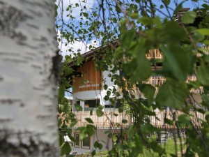 berghaus-anna-lisa-sommer-2015-birke